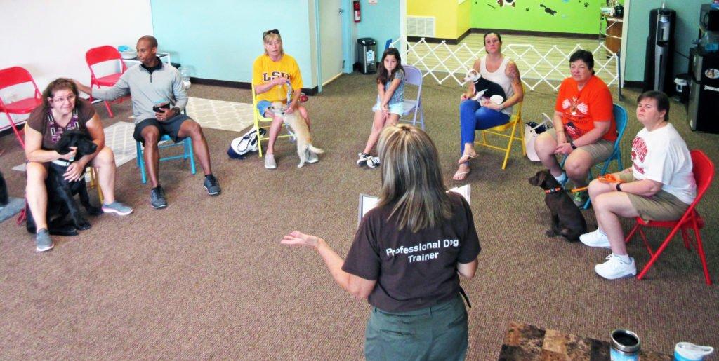 Teach Group Classes