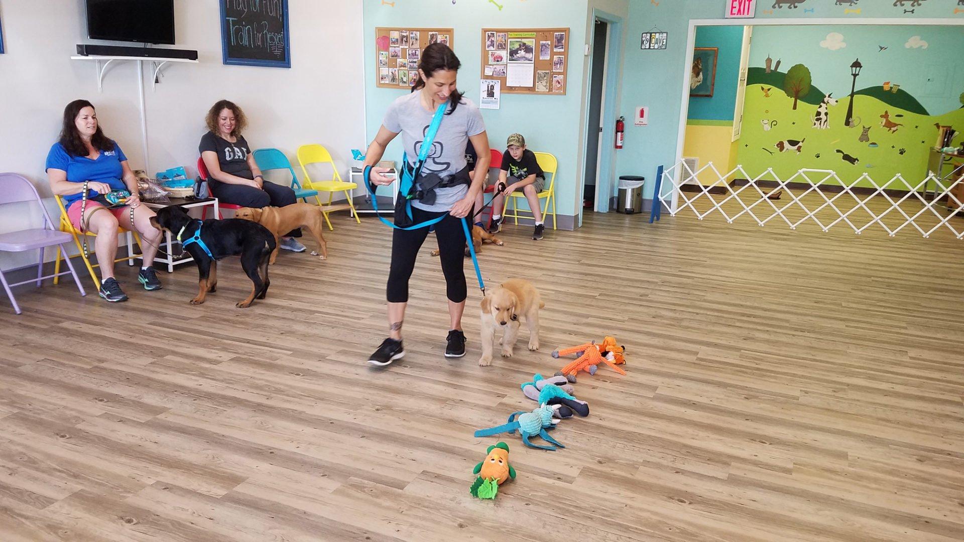 Lyissa-Walking-Puppy-by-Toys