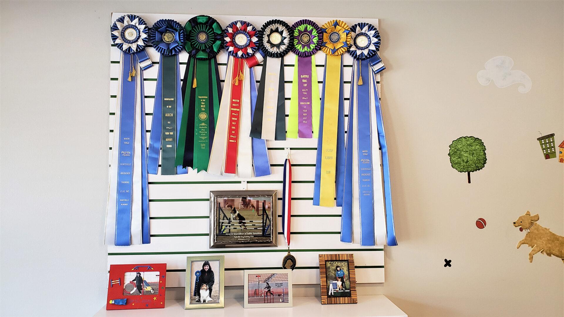 Kip's Ribbons & Photos