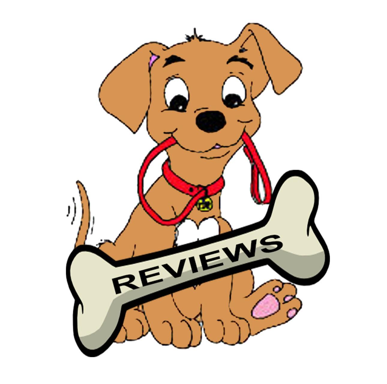 reviews ws